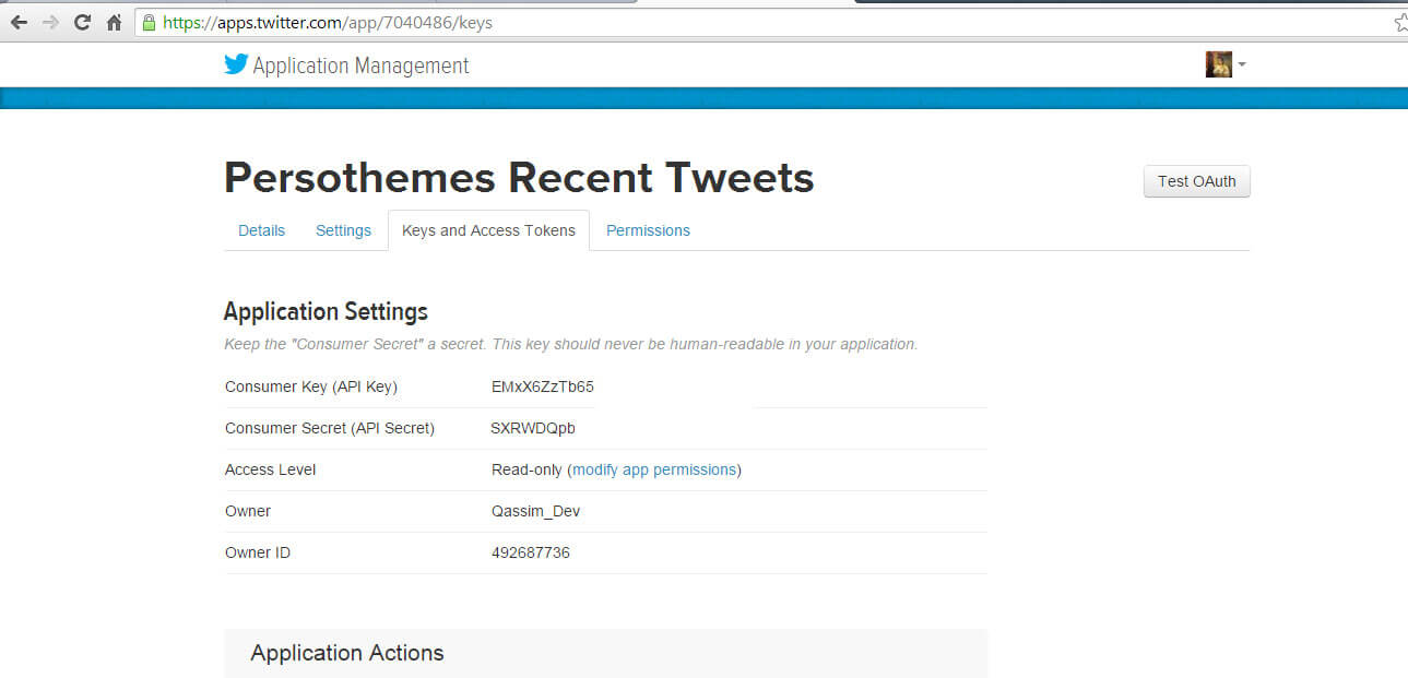 twitter profile widget api keys