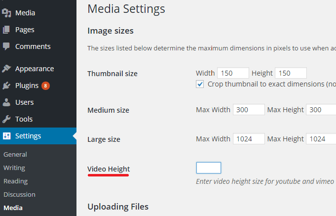 wordpress video widget option
