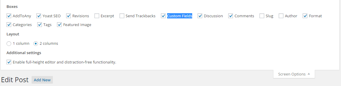 show wordpress custom field options